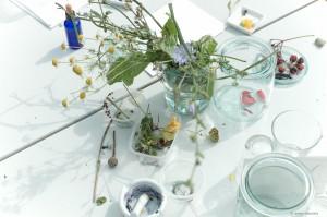 Malen mit Blüten und Naturmaterialien